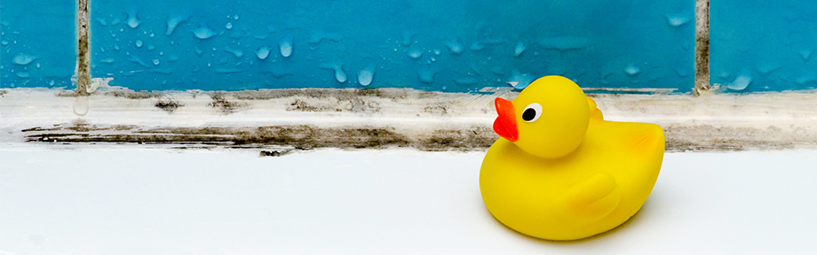 Rubber duck on windowsill with mold on the window sealant