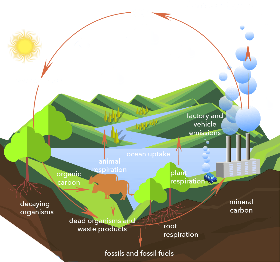 02-why_is_co2-important-1